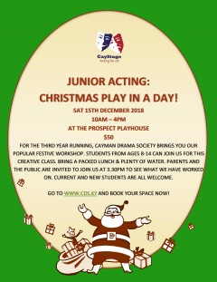 Play In A Day: Christmas (age 8-14s)
